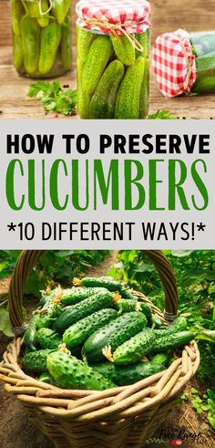 Distinctive Gifts Mean Long Lasting Recollections Food Preservation Vegetable Gardening Ideas Learn How To Preserve Your Cucumbers For Winter 10 Different Ways To Preserve-Including Canning Cucumbers, Freezing, Dehydrating, And Recipes Cucumber Canning, Cucumber Recipes, Recipes For Cucumbers, Cucumber Ideas, Preserving Cucumbers, Preserving Food, Mini Cucumbers, Cucumbers And Onions, Gardens