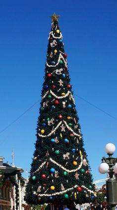 7 things to know about Disney World at Christmas | BabyCenter Blog