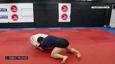 [MMA 강좌] UFC 조쉬 톰슨VS.벤 헨더슨(4)-톰슨의 그라운드 기술