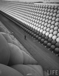 A security guard walking down US Highway 101 where there are towering stacks of hollow iron floats from which the iron antisubmarine nets were suspended to protect the US ports during the last war by Hank Walker 1953 [984 x 1280]