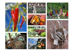 Garden-lover's card