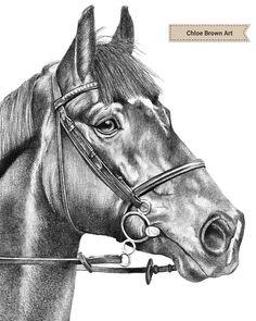 Pencil horse portrait please visit www.chloebrownart.com Chloe Brown, Horse Portrait, Brown Art, Contemporary Artwork, Pet Portraits, Original Artwork, Pencil, Horses, Ink