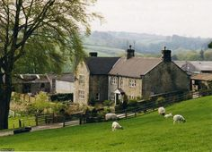 I want to spend an English spring in Yorkshire, enjoying its beauty. Inspired by South Riding by Winifred Holtby and All Things Bright and Beautiful (& the others) by James Herriott. photo credit: iknow-uk CC BY-NC-ND 2.0 Yorkshire Dales B&B, Scaife Hall Farm | Flickr - Photo Sharing!