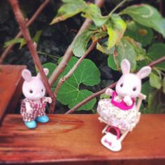 Brother and sister resting after another adventure #sylvaniansummer