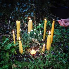 Preparing for Candlemas with candle dipping, making candles and games in celebration of this mid-point between Winter Solstice and Spring Equinox. Old Candles, Beeswax Candles, Wicca, Imbolc Ritual, All Souls Day, Altar Decorations, Natural Toys, Nature Table, Beautiful Candles