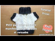 Tutoriel Tricot: Comment tricoter un pull à torsades pour chiens? - YouTube