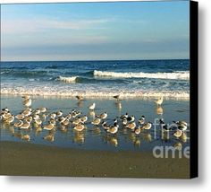 SALE ENDS AT 5:00 TODAY! Limited Time Promotion: Beach Party Stretched Canvas Print