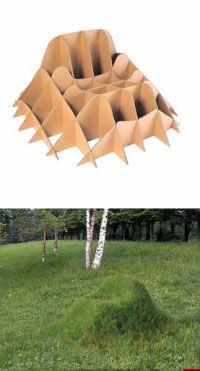 Grow your own grass chair! #yard #garden #backyard