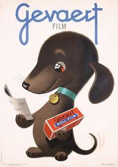 Donald Brun, illustration of a dog testimonial for Gevaert roll film, 1947. Switzerland. Source