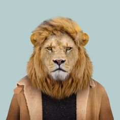 Zoo Portraits – Become the Animal » Zoo Portraits