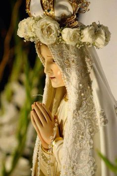 Our Lady of the Roses, Mary help of Mothers