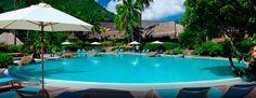 La piscine à débordement bordée de palmiers se situe dans un cadre paisible et verdoyant.