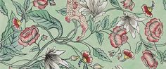 Картинки по запросу green wallpaper ralph dolce gabbana