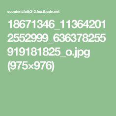 18671346_113642012552999_636378255919181825_o.jpg (975×976)