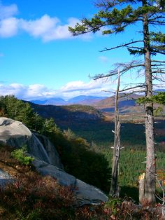 Cathedral Ledge in North Conway New Hampshire is a popular destination for rock-climbers. Everyone else loves it for the scenic view. It is gorgeous.