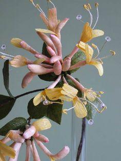 Jude Miller Flowers - Northern Europe