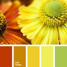 Color Palette #3253