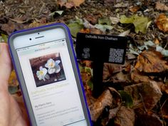 New plant markers embed QR codes for interactive experience