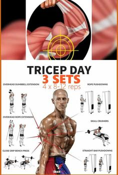 8 Exersises You Should Always Do On Triceps Day. Unleash new triceps growth by… - Fitness Tipps Gym Workout Chart, Workout Routine For Men, Gym Workout Tips, Cycling Workout, Fitness Workouts, Weight Training Workouts, Bike Workouts, Swimming Workouts, Swimming Tips