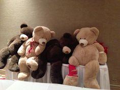 Bears in teddy bear hospital