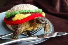 Tenue de tortue hamburger