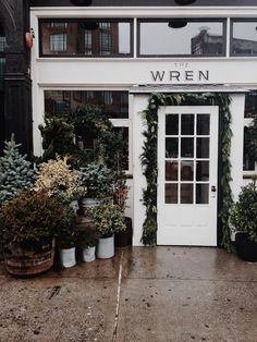 The Wren | Manhattan, NY