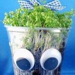 Mit Kindern Kresse aussäen und beim Wachsen zuschauen. Statt eines normalen Blumentopfes einen Plastikbecher nehmen und lustig gestalten.