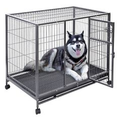 Apontus Heavy Duty Dog Cage with Tray Pan, 44' x 29' x 37' * Additional details at the pin image, click it  : Dog cages