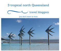 3 tropical north Queensland local's that share their know how on their blogs. Trinity Beach, Cairns, Exploring, Tropical, Places, Kids, Travel, Animals, Young Children