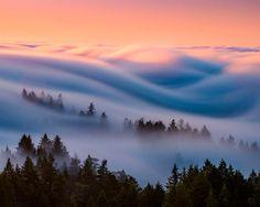 Fotos que nos muestran la belleza de la niebla en sus olas - Taringa!