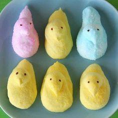 Homemade Marshmallow Chicks