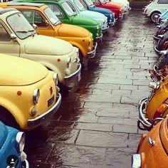 500 ❤️of My Life . #proudtobe #italiansdoitbetter Vintage Racing, Vintage Cars, Nissan Figaro, Lapo Elkann, Fiat Abarth, Italian Beauty, Small Cars, Retro Cars, Cars And Motorcycles