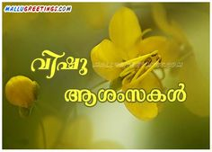 Related Pictures Vishu Scraps Malayalam Orkut