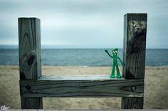 """Picture-A-Day (PAD n.1019) """"Gumby!"""" He enjoys the beach.  ~Amy, DangRabbit Photography"""