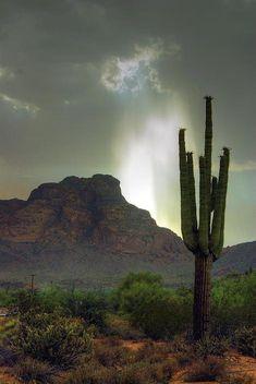 Red Mountain, Arizona