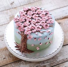 Today's cake decorating inspiration! How beautiful is this buttercream flower cake by Pretty Cakes, Cute Cakes, Beautiful Cakes, Amazing Cakes, Beautiful Desserts, Cake Cookies, Cupcake Cakes, Mousse Au Chocolat Torte, Cherry Blossom Cake