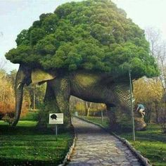 Image may contain: outdoor and nature Topiary Garden, Garden Art, Garden Design, Weird Trees, Garden Animals, Unique Trees, Nature Tree, Tree Art, Dream Garden