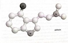 """Add a single oxygen atom to DMT and you get psilocin, which is what your body turns psilocybin into in order to ball trip. For all intents and purposes, you could consider it orally active DMT. I find this significant for 'meeting the neighbours' reasons.    Lest you think that entheogens are some kind of artificial molecular configuration that invades and hijacks your brain's """"normal"""" functioning, I suggest you look at the above shapes again. Your brain is built for these molecules…"""