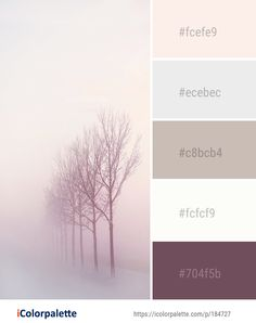Color Palette Ideas from Fog Winter Tree Image Winter Color Palettes, Taupe Color Palettes, Winter Colors, Bedroom Colour Palette, Bedroom Color Schemes, Bedroom Colors, Colour Schemes, Soft Colors, Colours