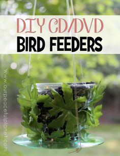 Here's a couple of unique upcycle birdfeeders you can make using plastic cups and old cd or dvds!  Tinier birds will love them!