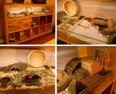 Hamster home made from Ikea furniture.  Not that I want a hamster but this is pretty cool.