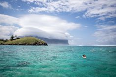 Bano and the ocean swimmers on a spectacular day | Lord Howe Island