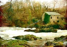 Cenarth Falls Water Mill in Autumn.