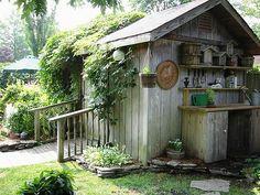 Potting bench outside garden shed.