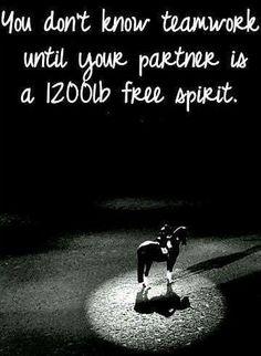 https://www.facebook.com/pages/Green-Mile-Equine-and-Animal-Bedding/276481777209?ref=hl