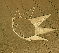 Crop Circle at Longwood Warren, nr Winchester, Hampshire. Reported 23rd July 2012.