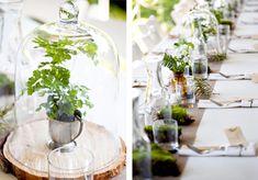 wedding table ideas, wedding reception ideas, bell jars, cloches, plants
