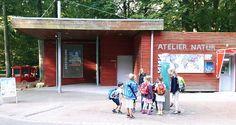 Vorbereitung für unsere Ausstellung im Rostocker Zoo   Autelier Natur im Rostocker Zoo – Ort der aktuellen Ausstellung unserer Aquarelle (c) FRank Koebsch