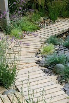 Absolutely love this! Excellent choice of materials & choice of plants.  DESIGNER: SUE ADCOCK: WOODEN BOARDWALK IN SEASIDE GARDEN  clivenichols.com