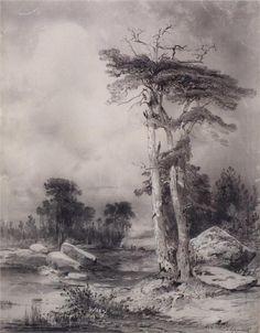 Old pine, Aleksey Savrasov Landscape Sketch, Landscape Drawings, Fantasy Landscape, Ink Illustrations, Illustration Art, Drawing Sketches, Art Drawings, Boat Drawing, Russian Landscape